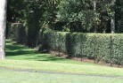 Apsley VIC Wire fencing 15